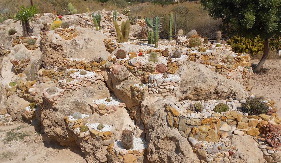 Lombrico garden for Jardines de bajo mantenimiento